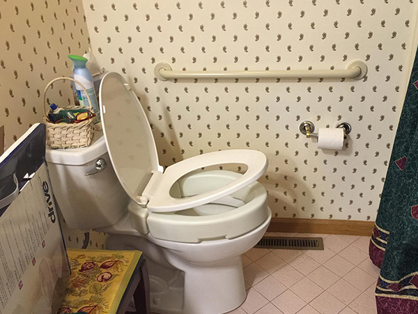 Raised Toilet Seats